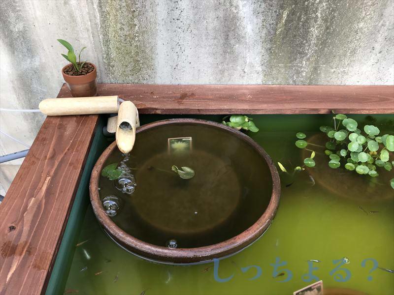 竹の吐水口