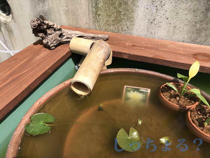 竹の吐水口改良