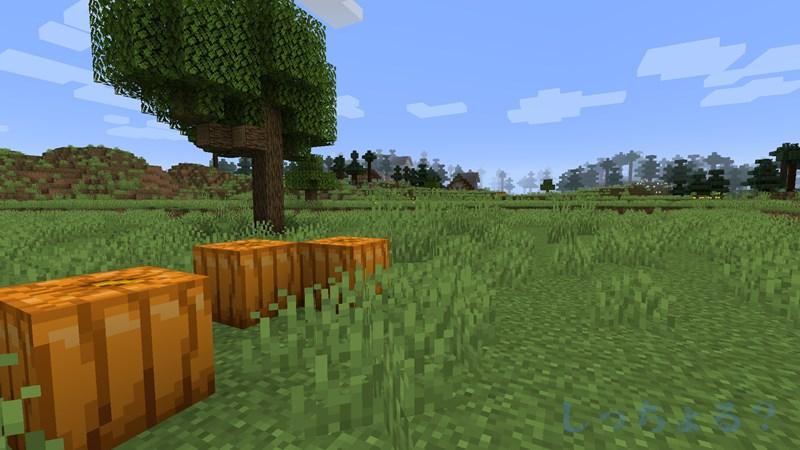 一砂Minecraft次の村