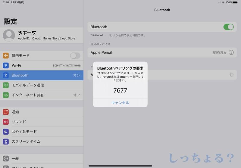 iPad Bluetooth設定認証